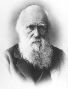 Charles Darwin als inspiratie