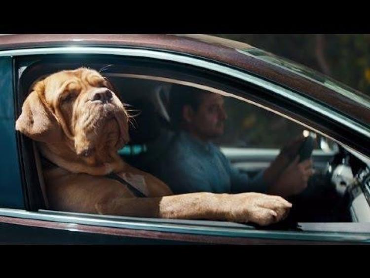 eigenaarschap verwerkt in de VW reclame